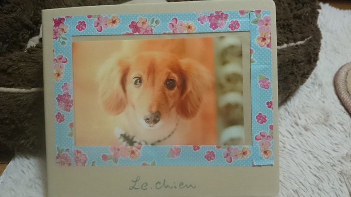le.chien☆トリミング